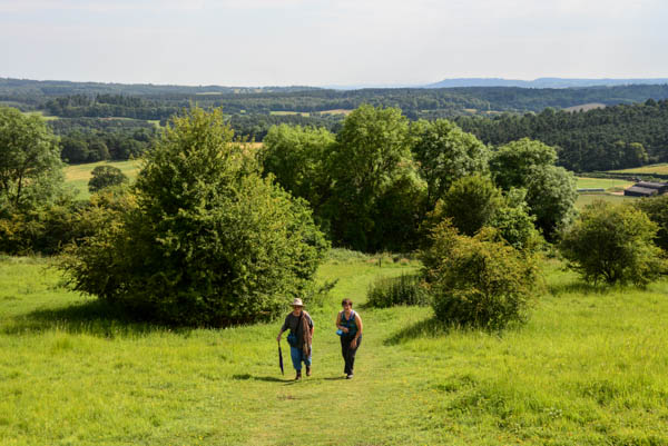 A last walk in the country at Newlands Corner near Guildford.