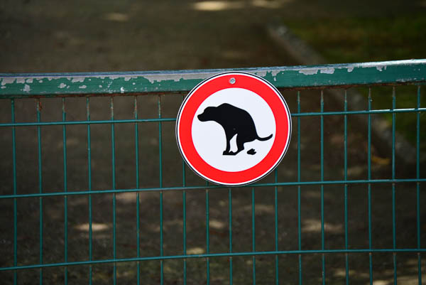 Amazing ... is this a place where dogs are allowed to poo?