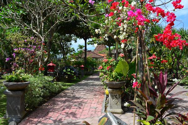 A proper Balinese garden at last!