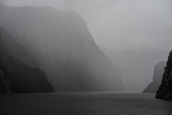 We enter Milford Sound in the rain.